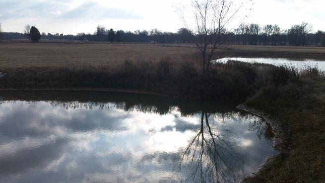 reflections of arkansas