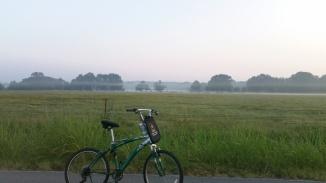 fog cycler